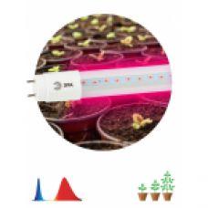 FITO Лампы тип цоколя Т8 ЭРА Лампа красно-синего спектра FITO-9W-RB-Т8-G13-NL