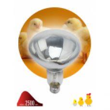 FITO Лампы тип цоколя E27 ЭРА Инфракрасная лампа ИКЗ 220-250 R127 E27