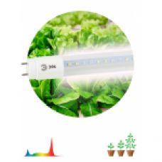 FITO Лампы тип цоколя Т8 ЭРА Лампа полного спектра FITO-9W-Ra90-Т8-G13-NL