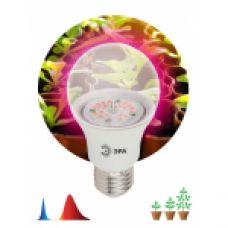 FITO Лампы тип цоколя E27 ЭРА Лампа красно-синего спектра FITO-10W-RB-E27-K